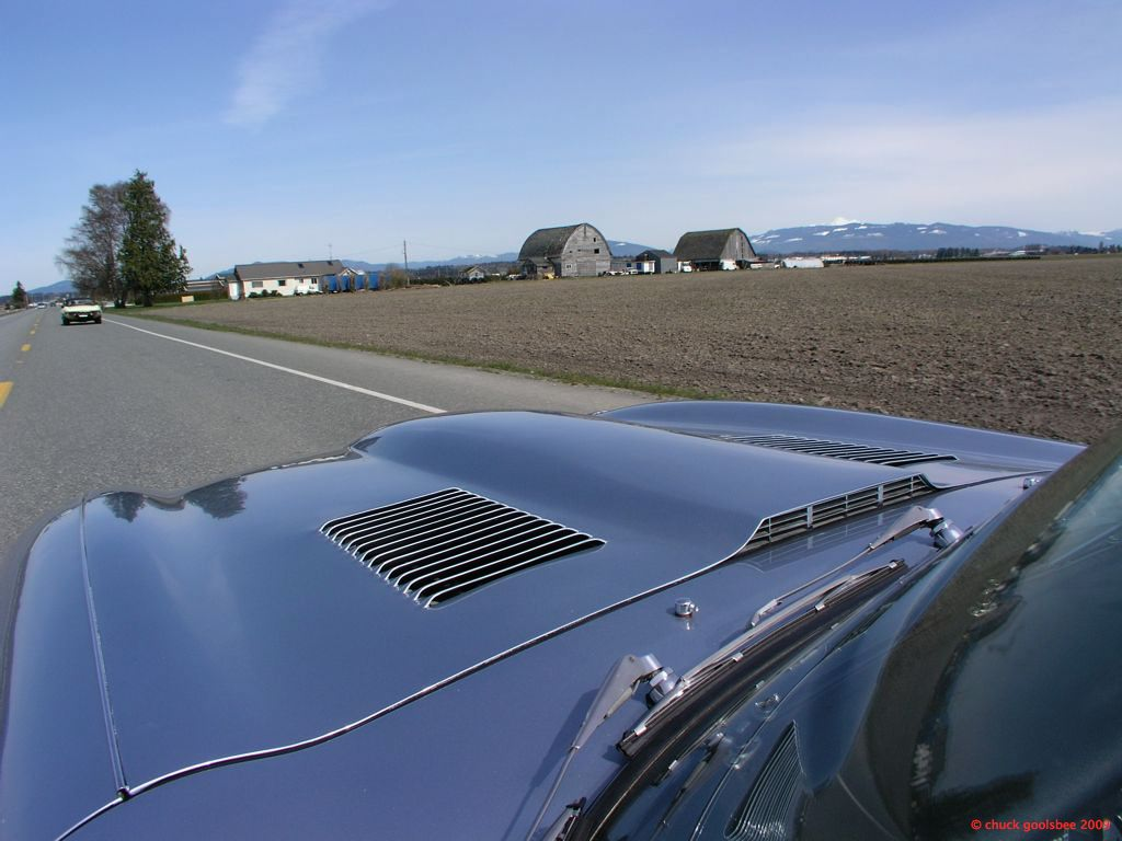 Cruising along in the Skagit Valley. Spring has Sprung!